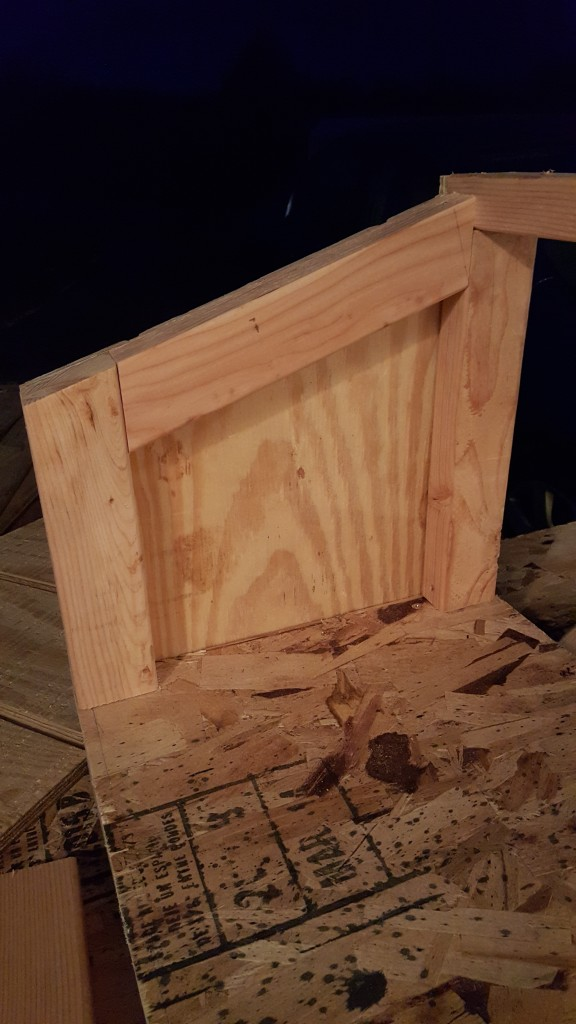Started building the nesting box.  These side cuts were tricky for an amateur like me!