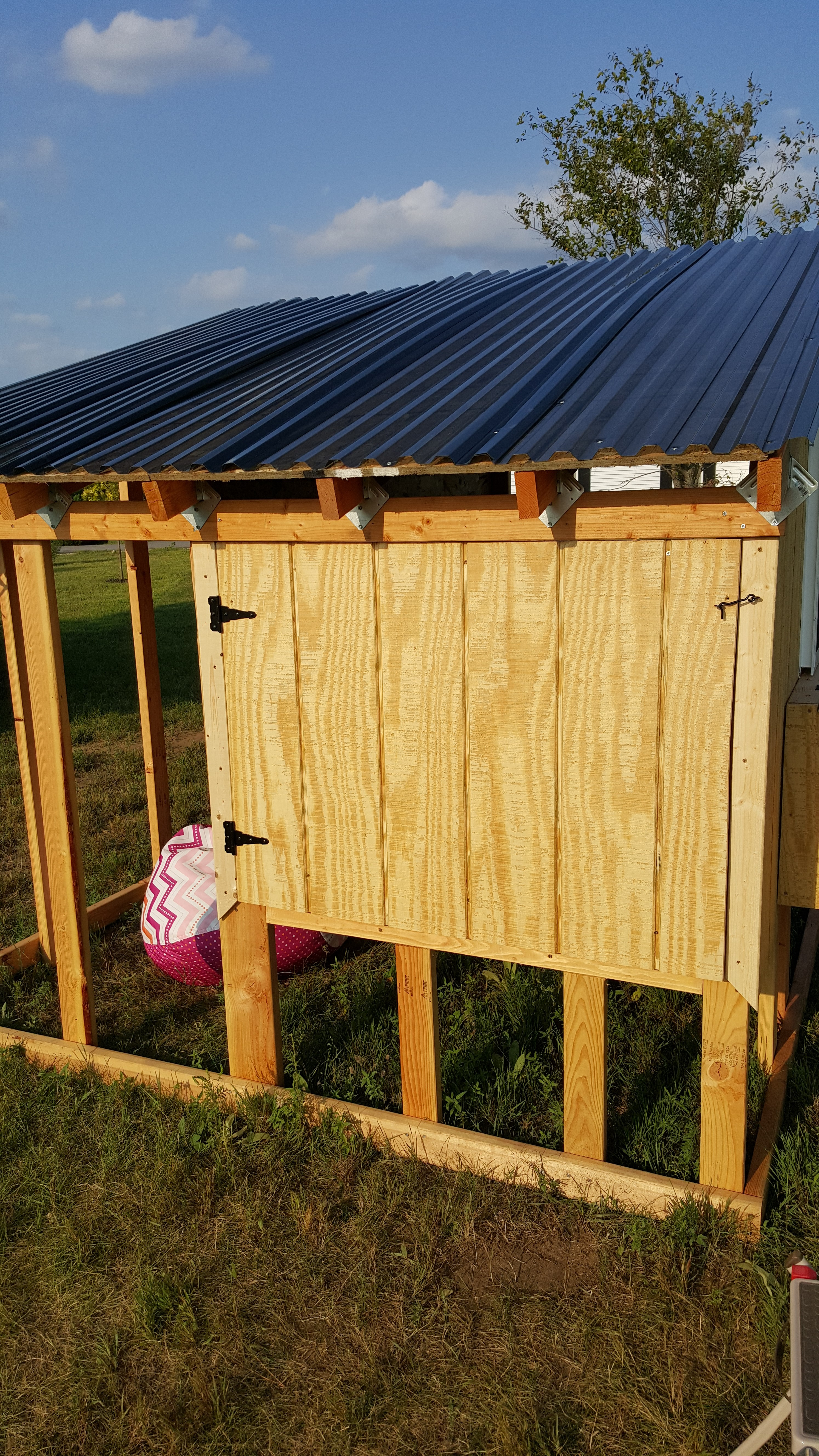 Pictures of amateur built chicken coops